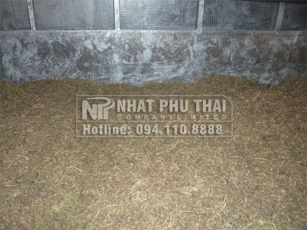 lap dat may say co ngot tai nam dinh 09
